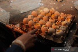 Telur beranak ayam beredar di sejumlah pasar Kota Bogor