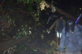 Jalur utama Cianjur Selatan putus akibat tertimbun longsor