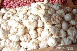 Harga bawang putih di pasar Ambon turun