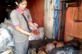 Penjualan gula aren di Rejang Lebong stabil Rp16.000 per kilogram