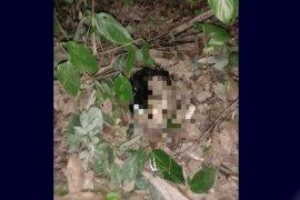 Polisi selidiki penemuan mayat bayi laki-laki