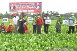 Bupati Tabanan borong sayur petani selama COVID-19
