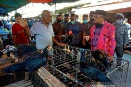 Bupati Aceh Barat harapkan normal baru jadi awal kebangkitan ekonomi rakyat