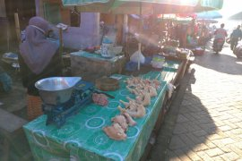 Harga ayam potong di pasar tradisional Kota Rantau masih tinggi