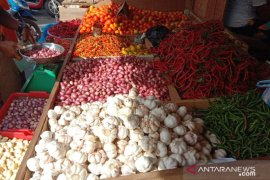 Harga cabai di Ambon turun cukup tajam