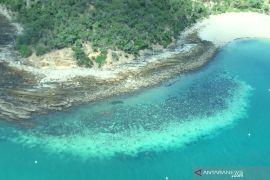 PBB usul Great Barrier Reef Australia masuk daftar kategori \'dalam bahaya\'