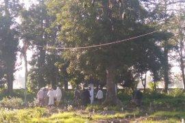 Pria berstatus PDP di Situbondo meninggal dunia