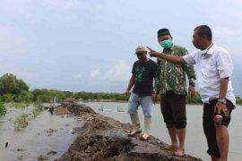 Ribuan rumah di Indramayu tergenangi banjir rob