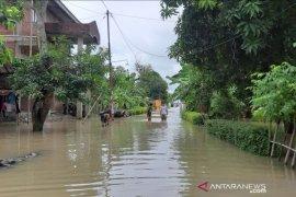 Air laut pasang merendam 187 rumah warga di Kota Tegal