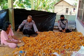 Polisi jaga ketahanan pangan saat pandemi COVID-19
