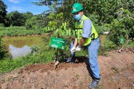 Peringati Hari LH  PT Pama lakukan penanaman pohon