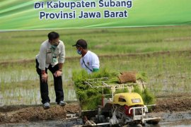 Mentan Syahrul Yasin minta seluruh dirjen turun ke lapangan pada musim tanam kedua