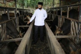Banyak kritik dan saran dari warga, Kadisnak Aceh ucapkan terima kasih