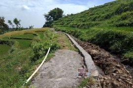Dapat Bantuan RJIT, Petani Mojokerto Siap Hadapi Musim Tanam II