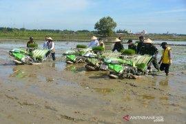 TNI bersama petani percepat musim tanam di Aceh Besar