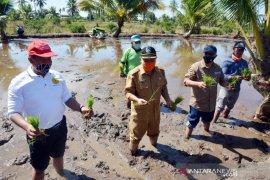 Bupati Muda ajak masyarakat perkuat sektor pangan saat pandemi