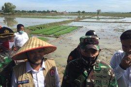 Ini kata Pangdam IM terkait kedaulatan pangan Aceh