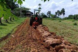 10 kelompok karyawan Bapeltan Jambi berkompetisi tanam sayuran