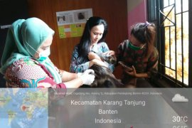 Di tengah Pandemi COVID-19, Puskeswan tetap berikan pelayanan kesehatan hewan
