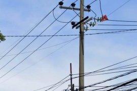 PLN Jatim catat 49 kali listrik padam akibat layang-layang