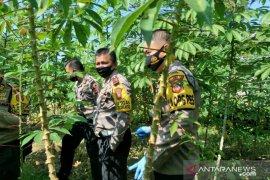 Pembibitan tanaman dan budi daya ternak cara Polres Subang ikut jaga ketahanan pangan di tengah pandemi