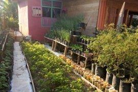 KWT  Kartini Mandiri manfaatkan pekarangan penuhi pangan di tengah pandemi