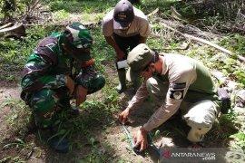 Tim BBKSDA survei lokasi harimau terkam dua anak sapi warga
