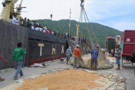 Kementan apresiasi Gorontalo tetap produktif ekspor di tengah pandemi COVID-19