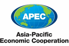 COVID-19 crisis to deepen economic slump in APEC: report