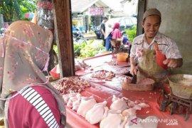 KPPU masih teliti kenaikan harga ayam ras di Sumut