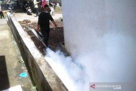 Dinkes: Demam berdarah dengue di Rejang Lebong capai 96 kasus