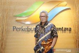 Holding Perkebunan restrukturisasi anak perusahaan non-PTPN