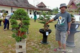 78 tanaman bonsai meriahkan pameran karya terbaik pegawai PUPR Babel