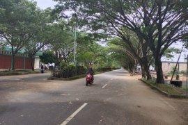 Warga dilarang tebang pohon diruas jalan kantor bupati Abdya