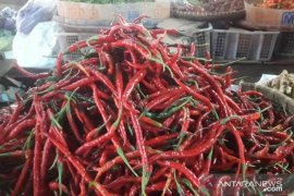 Harga cabai keriting di Pasar Cianjur turun