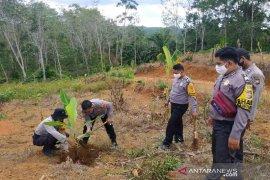 Tingkatkan ketahanan pangan, Polres Bengkulu Utara tanam pisang dan ubi kayu