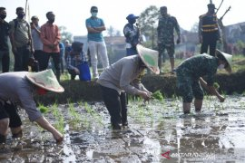 "Pembentukan ""Kampung Tangguh"" di Sukabumi untuk jaga ketahanan pangan"