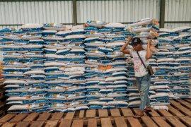 Bulog serap 3.000 ton beras petani di Lebak dan Pandeglang