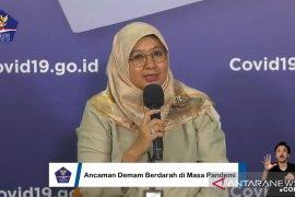 Kemenkes catat penambahan hingga 500 kasus DBD per hari di Indonesia