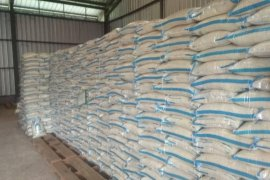 Bulog Lebak-Pandeglang kembali serap 120 ton beras petani