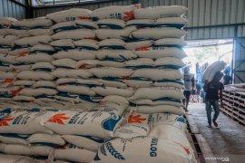 Di tengah pandemi COVID-19, persediaan beras di Lebak surplus