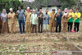 Pandemi COVID-19, Kejari Tapsel ajak masyarakat petani membangunkan lahan tidur