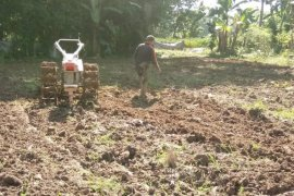 Penyuluh Sarolangun dampingi petani dalam percepatan musim tanam padi