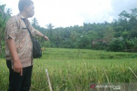 Petani Sukabumi dimotivasi lakukan percepatan olah tanah dan tanam jaga persediaan pangan