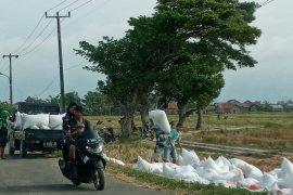 Dinas Pertanian Banten tingkatkan produksi padi antisipasi  kekurangan pangan ditengah pandemi