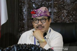 """Wagub: """"Kerja dari Bali"""" potensial dikembangkan di tengah pandemi"""