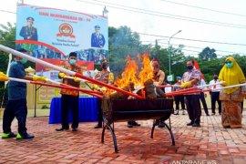 28,6 kg ganja dimusnahkan  Polisi Nagan Raya Aceh