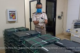 Polisi Lampung gagalkan penyelundupan 400 ekor burung kacer