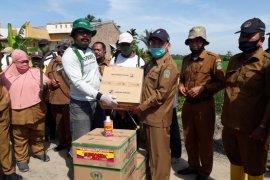 Jaga produksi pangan, Pemprov Sumut atasi  serangan hama wereng