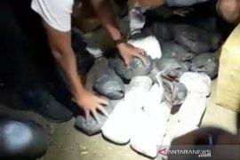 Polda Sulteng gagalkan 25 kilogram narkoba hendak masuk Palu